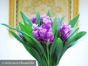ปทุมมา Bangkok Prink